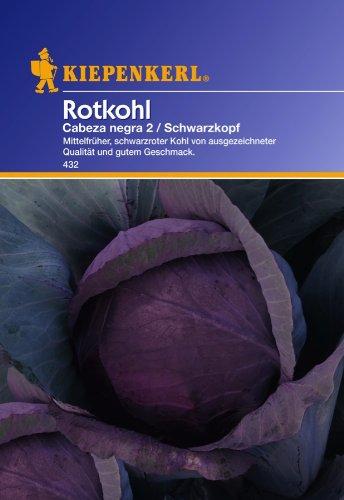 Rotkohl, 'Cabeza negra 2' Schwarzkopf