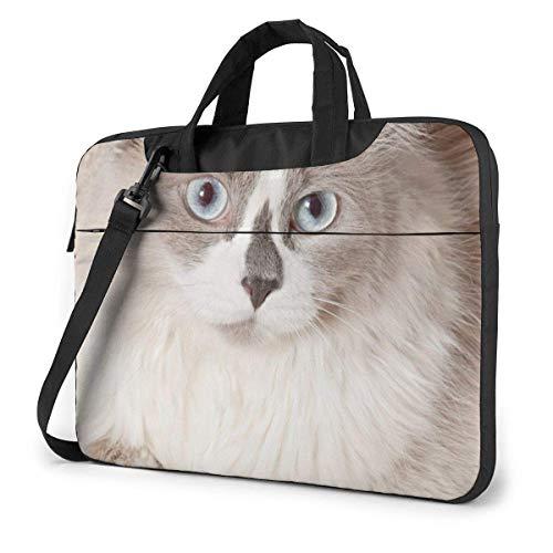 15.6 inch Laptop Tasche Schultertasche Bussiness Messenger Tablet Tasche Laptophülle Beige Cat Liegesofa
