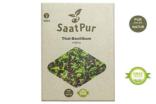 SaatPur Thai-Basilikum Samen für ca. 150 Pflanzen
