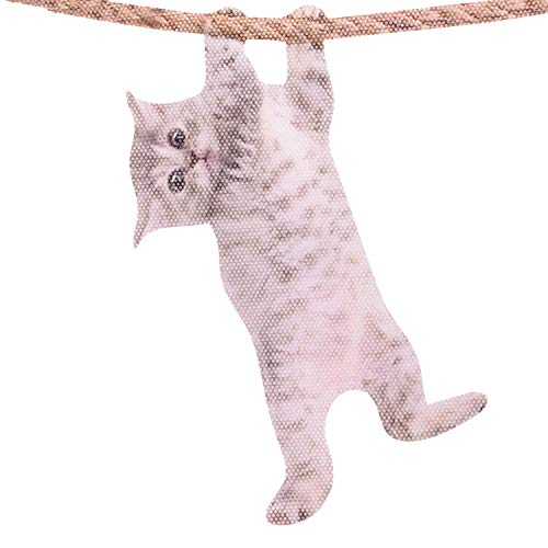 Thumbs Up RW-CATLHD Ride with Hanging Autocollant de fenêtre Cat, Multicolore, x