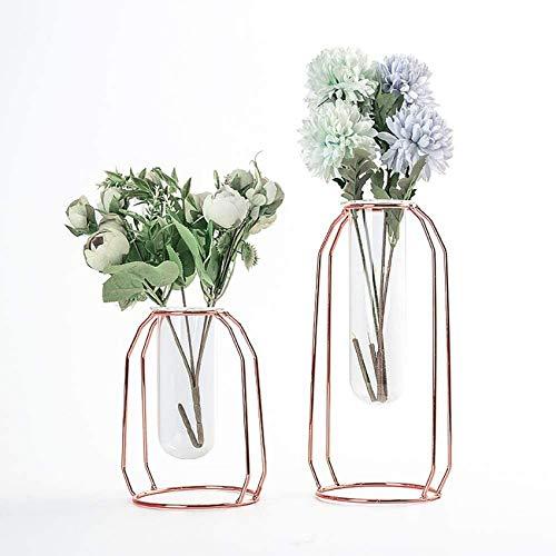 UYZ Gaosheng - Florero de Vidrio hidropónico de 2 Piezas con Marco de Metal, florero de Vidrio para Plantas, para Sala de Estar, balcón, Oficina, Banquete de Boda y Otra exhibición de Flores