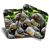 Great Coasters (Set de 2) Posavasos cuadrados/brillantes de calidad para cualquier tipo de mesa – Pez piraña acuario #13277
