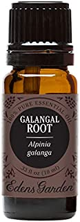 Edens Garden Galangal Root Essential Oil, 100% Pure Therapeutic Grade (Highest Quality Aromatherapy Oils- Cold Flu & Sleep), 10 ml