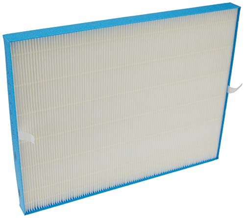 Winix 115122 PlasmaWave Series Long Life Washable Filter, Size 21, carbon pre-filters(4),White