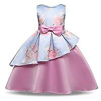 子供の女の子のドレス ガールズフラワーノースリーブウェディングフォーマルドレスプリンセスウェディングブライズメイドパーティードレス誕生日パーティーイブニングプロボールガウン3-8歳 女の子のパーティーウェディングブライドメイドの王女のドレス (Size : 140 cm)