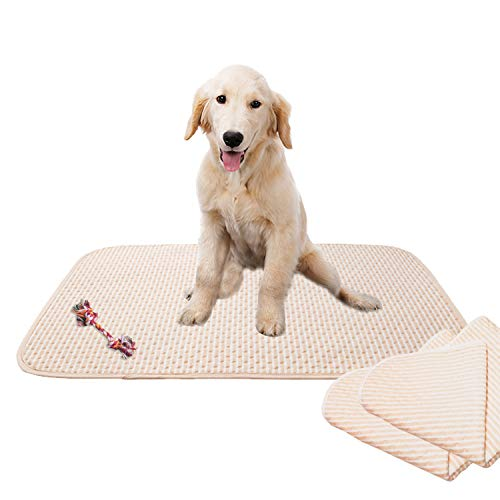 2 Pack Washable, Reusable, Pet Training and Puppy Pads, 20x28