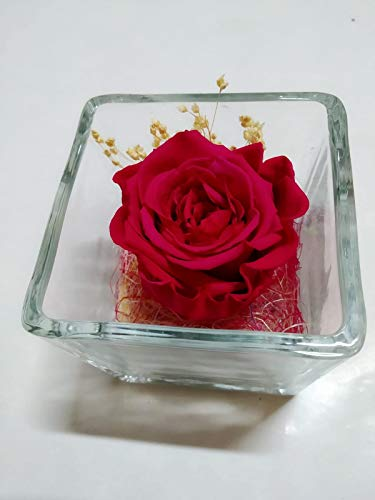 Rosa eterna roja. Gratis TU ENVÍO. Rosa eterna roja en Cristal. Rosa preservada roja. Hecho en España.