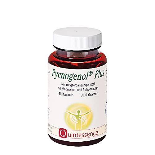 Pycnogenol® Plus, 60 Kapseln von Quintessence, Kieferrinden-Extrakt, Mit OPC, Für Gefäßwände und Durchblutung, Vegan