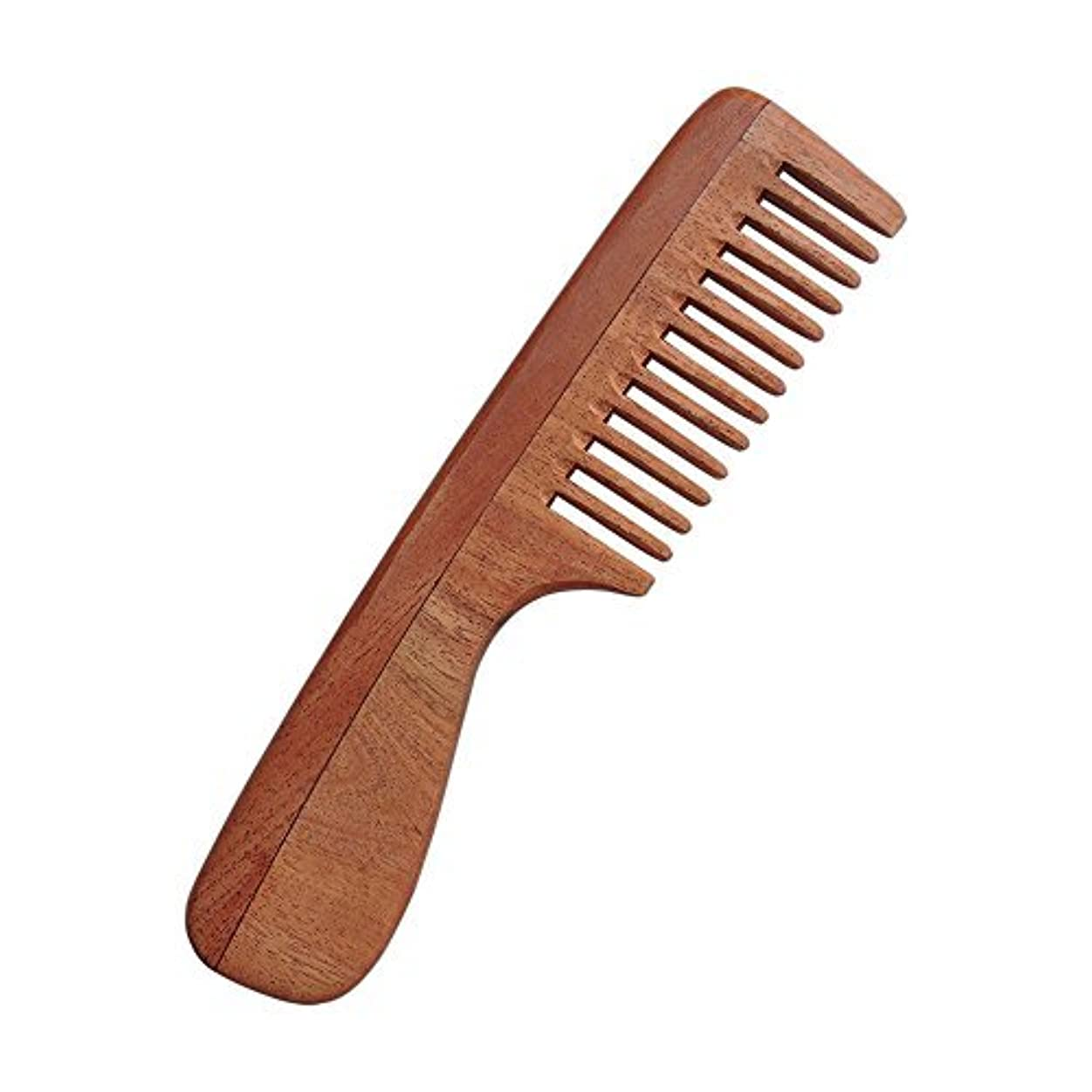 HealthGoodsIn - Pure Neem Wood Wide Tooth Comb with Handle for Thick Hair | Wide Tooth Comb| Comb with Handle | Organic and Natural [並行輸入品]