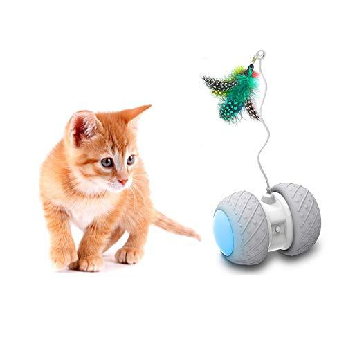 Yvelife Interactive Cat Toy