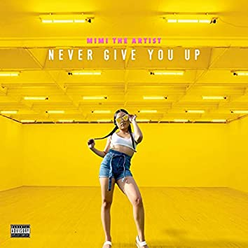 Never Give You Up