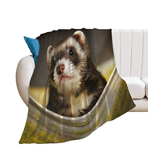 Throw Blanket for Couch Flannel Blankets Cute Ferret In A Hammock Animal Lightweight Ultra Soft for All Season Farmhouse Decorative Blanket for Bed Sofa Travel Birthday Gift 30x40 Inch