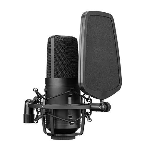 JJZXD Micrófono de Condensador cardioide de Filtro de Corte bajo Profesional de Gran tamaño para grabación en Vivo de Video de Estudio Cámara de Video (Size : Style 2)