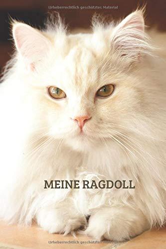 Meine Ragdoll: TOLLES Ragdoll Katze BUCH FÜR NÜTZLICHE INFORMATIONEN MIT LISTEN FÜR FUTTER, PFLEGE, NOTIZEN UND IMPFUNGEN.