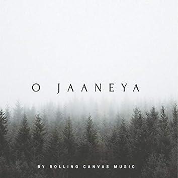O Jaaneya (feat. Rahul Jain & Vidhya Gopal)