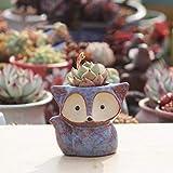 Mini Maceta de cerámica traviesa Maceta suculenta Maceta Creativa gres Transpirable decoración de la Oficina en casa