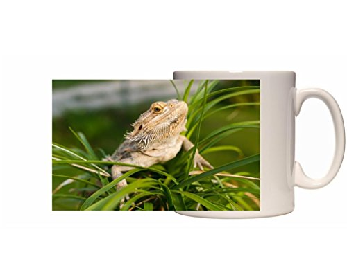 Dragón Barbudo taza de cerámica 10fl oz (media pinta) imagen # FC3