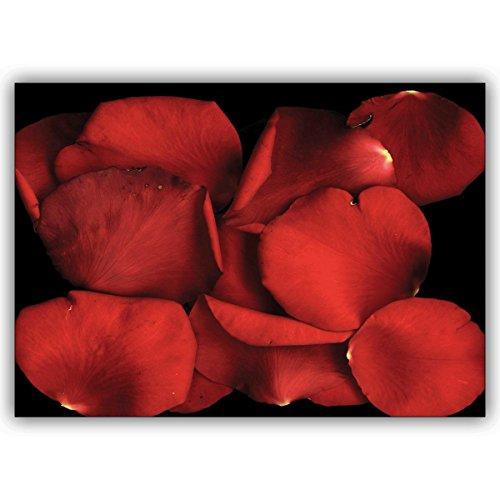 Wenskaarten met hoeveelheidskorting: Rozen bloemblaadjes - romantische foto wenskaart/cadeauverpakking met liefde • grote kaart met envelop in premium kwaliteit 4 Grußkarten
