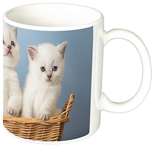 MasTazas Gatitos Gatos Kittens Cats J Tasse Mug