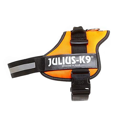 Julius-K9 Powerharness, 1, UV Orange