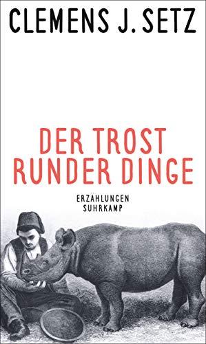 Der Trost runder Dinge: Erzählungen (suhrkamp taschenbuch)