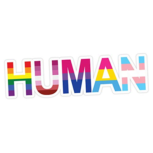 Applicable Pun Human LGBT Flags Rainbow Lesbian Bisexual Pansexual Transgender - Vinyl Decal Sticker 7 inches Wide