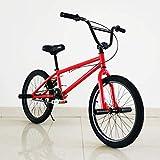 LUO Bicicleta, Bicicleta para adultos de 20 pulgadas, Bicicleta de acción para acrobacias de grado profesional, Bicicletas de calle, Adecuado para jinetes de nivel principiante a avanzado, D,re