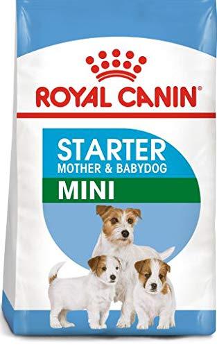 Royal Canin Mini Starter 1 Kilo cibo per cuccioli per cani e mamme