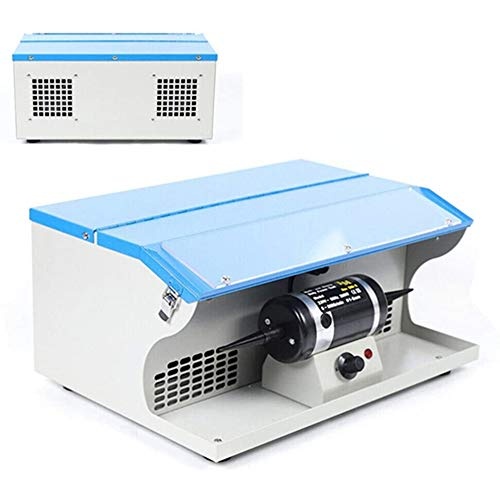 Bench Jewelry Polisher 110V 200W Jewelry Rock Polisher Buffer Polishing Buffing Machine Table Top Jewelry Making Tool Dust Collector 8000RPM with Light (US PLUG)