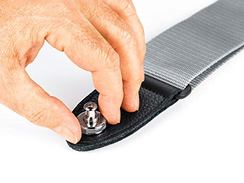 Schaller Security Locks Nickel 1 Paar