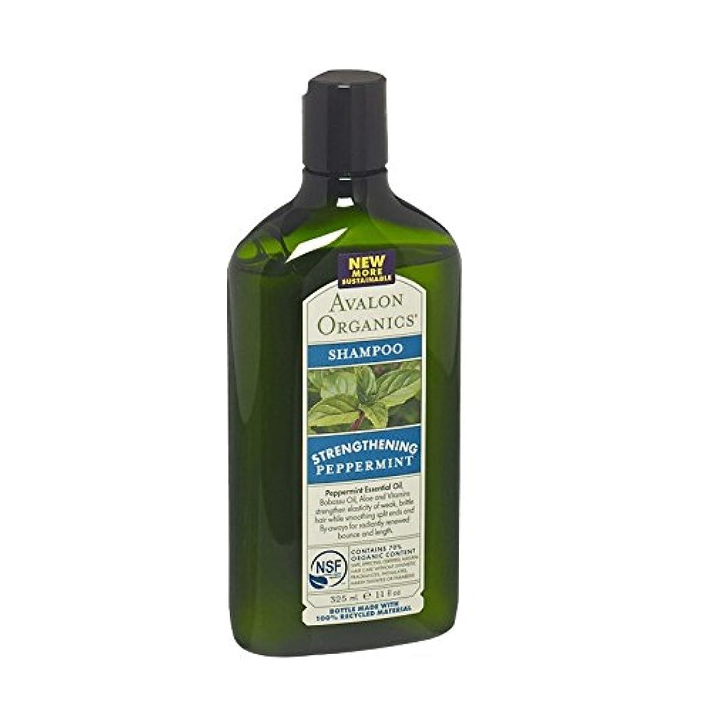 ファンネルウェブスパイダー欠員異常なAvalon Peppermint Revitalizing Shampoo (Pack of 2) - アバロンペパーミントリバイタライジングシャンプー (x2) [並行輸入品]