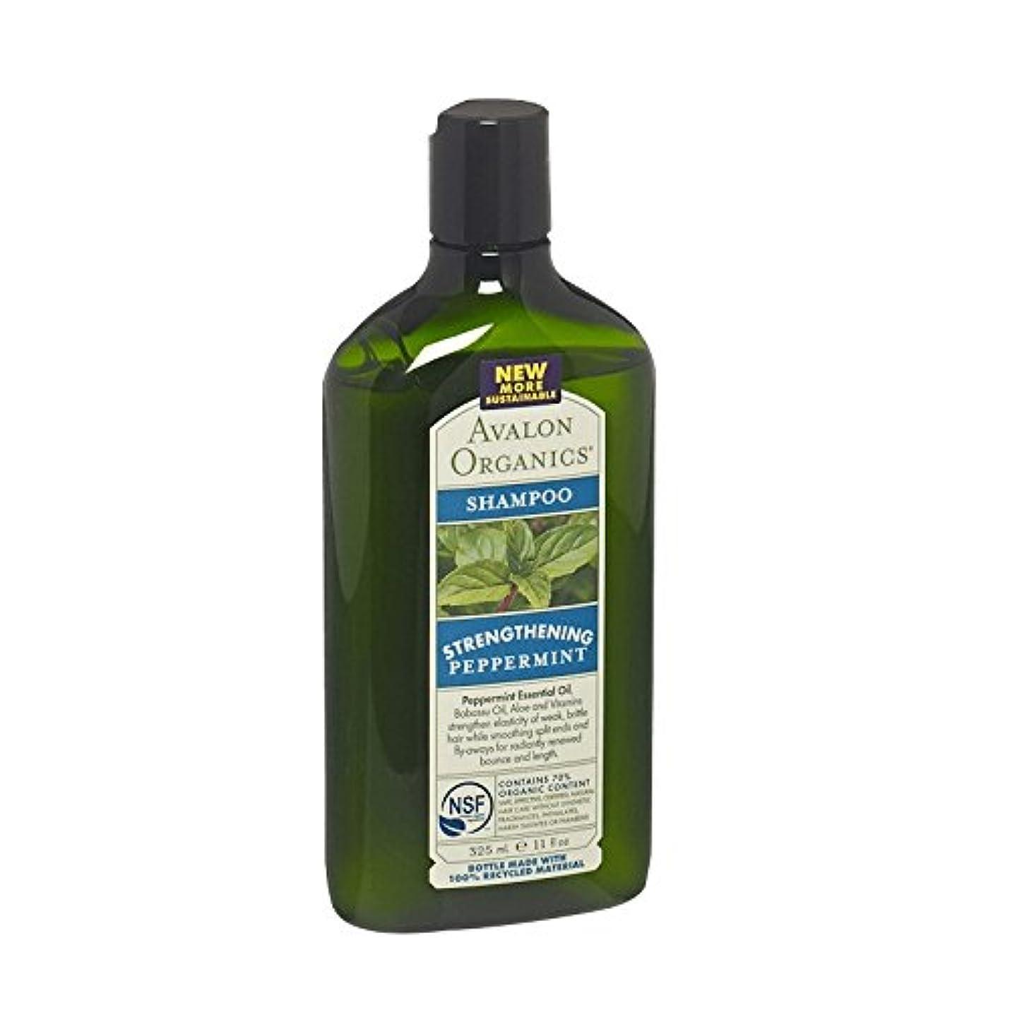 ガウンなのでラッシュAvalon Peppermint Revitalizing Shampoo (Pack of 2) - アバロンペパーミントリバイタライジングシャンプー (x2) [並行輸入品]