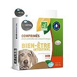 Biovetol - OFFRE SPECIALE - Comprimés Bien-être Intestinal pour Moyen/Grand Chien - x10 dont 2 OFFERTS.