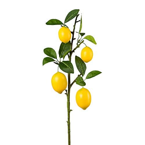 Gasper Künstlicher Zitronenzweig mit Blättern und Zitronen H. 68cm gelb grün