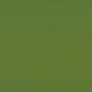 Vaessen creative Florence Papier Cartonné, Vert (Olive), 216g, A4, 10 Feuilles, Surface Texturée, pour Peindre, Scrapbooki...