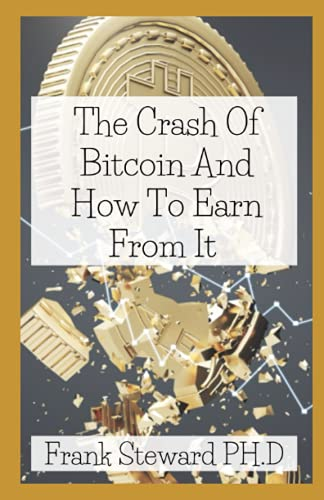 The Crash Of Bitcoin And How To Earn From It: Big Reasons Why You Don't Need to Panic, & How You Can Stay Safe and Profitable