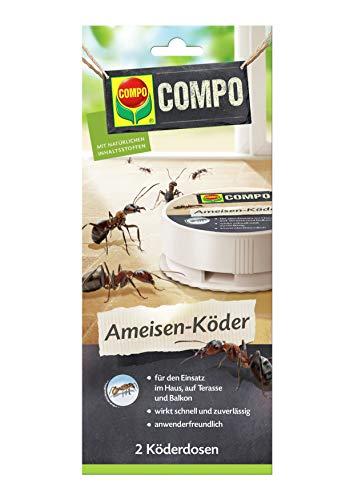 COMPO Ameisen-Köder N, Bekämpfung von Ameisen im Haus, auf Terrasse und Balkon, 2 Köderdosen
