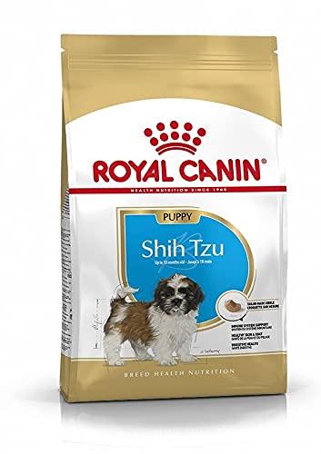 ROYAL CANIN Shih Tzu Junior 1,5 kg, 1er Pack (1 x 1.5 kg)