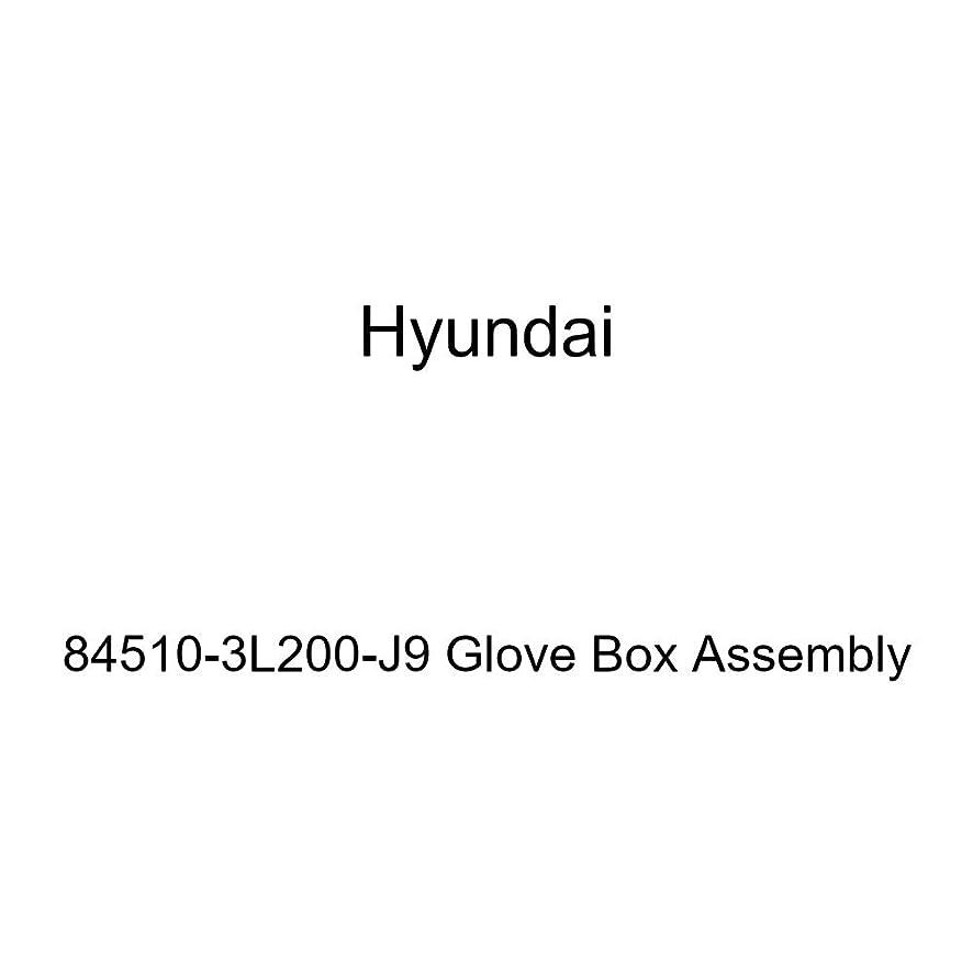 Genuine Hyundai 84510-3L200-J9 Glove Box Assembly