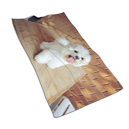 N/A Malteser-Hunde-Handtücher, sehr saugfähig, groß, dekorativ, vielseitig einsetzbar, für Badezimmer, Hotel, Fitnessstudio und Spa (40,6 x 76,2 cm)