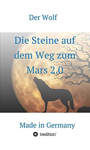 Die Steine auf dem Weg zum Mars 2.0: Made in Germany (German Edition)