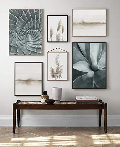 Laminas decorativas para enmarcar cuadros de pared. Estilo fotografía. Grandes 30 x 40cm y 20 x 30cm. Posters decoración del hogar, salón, moderno, nórdico (Cactus)
