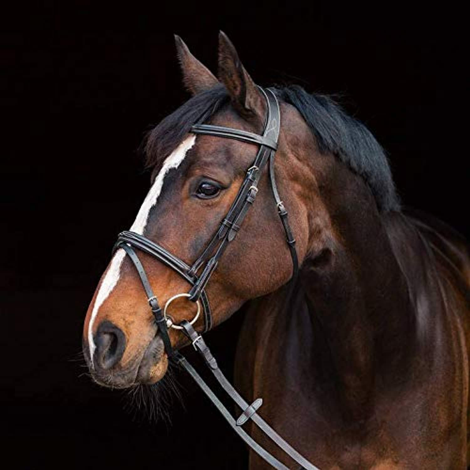 Horze Constance Padded Flash Bridle  Black  Full