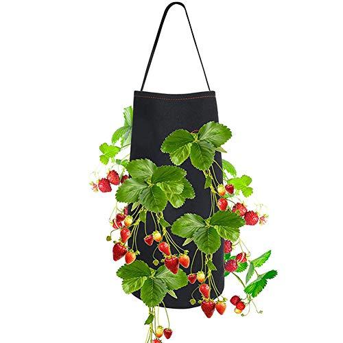 Erdbeer-Pflanzbeutel, Asudaro Hängen Erdbeerpflanzen Wachsen Tasche, Pflanzenwurzeltopf aus Vliesstoff Pflanzensack Pflanzgefäß Pflanzbehälter Pflanzkübel Garten Sack Pflanztasche,22 * 38cm Schwarz
