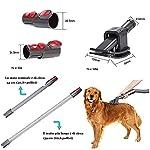 TPL Pet Groom Tool Accessoire compatible avec Dyson V11 V10 V8 V7 V6 Adaptateur convertisseur d'aspirateur, tuyau d'extension de fixation, brosse pour chien,brosse chat poil long peigne chat #1