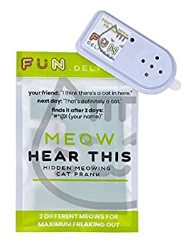 FUN delivery Meow Hear This  Hidden Meowing Cat Prank Gag Joke Sound
