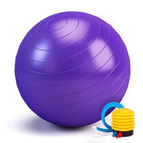 Switory Palla Fitness 65cm Stabilità, Equilibrio e Yoga - Guida All'allenamento e Pompa Rapida Inclusa - Palla di Stabilità per Casa, Palestra, Sedia, Palla da Parto