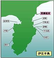 マイ海図 高精細印刷版パウチ加工無し -伊豆半島 真鶴 福浦 9枚組
