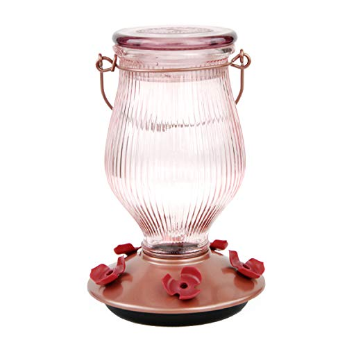 Perky-Pet 9104-2 Rose Gold Top-Fill Glass Hummingbird Feeder Rose Gold 24 oz Capacity