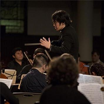 Symphony No. 25 in G Minor, KV. 183: I. Allegro con brio (Live)